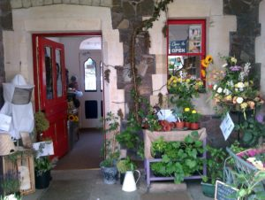 Shrinking Violet Bespoke Floristry wins Malvern in Bloom 2013 in Small Business Category for platform display
