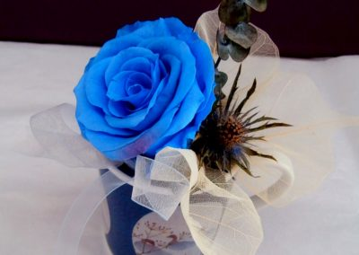 Blue freeze dried rose in tea cup