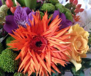 Wonderful bright flowers and Scruffy Gerbera