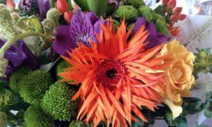 Bright flowers and scruffy gerbera
