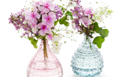 8 steps to keep your cut flowers looking great for longer