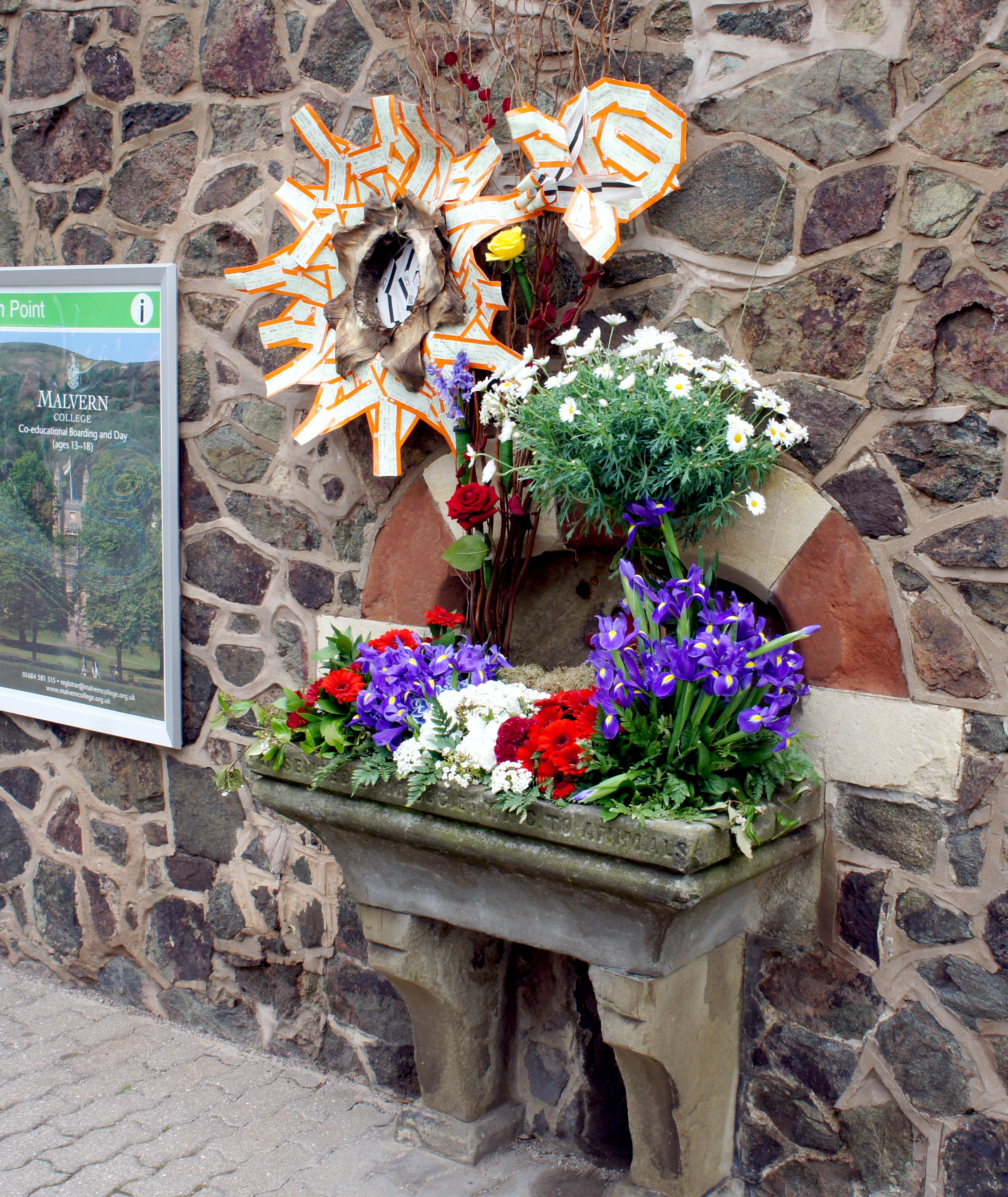 Old stone sink dressed in red, purple and white flowers with ticket sunflower and bee at Great Malvern Station